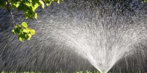 Plant Irrigation